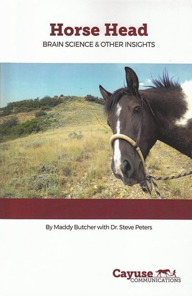 HORSE HEAD: BRAIN SCIENCE AND OTHER INSIGHTS BY MADDY BUTCHER AND DR. STEVE PETERS