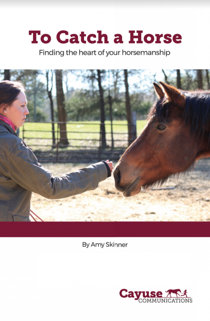 TO CATCH A HORSE: FINDING THE HEART OF YOUR HORSEMANSHIP BY AMY SKINNER
