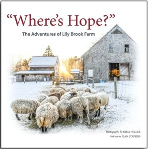 WHERE'S HOPE THE ADVENTURES OF LILY BROOK FARM BY JEAN COUSINS